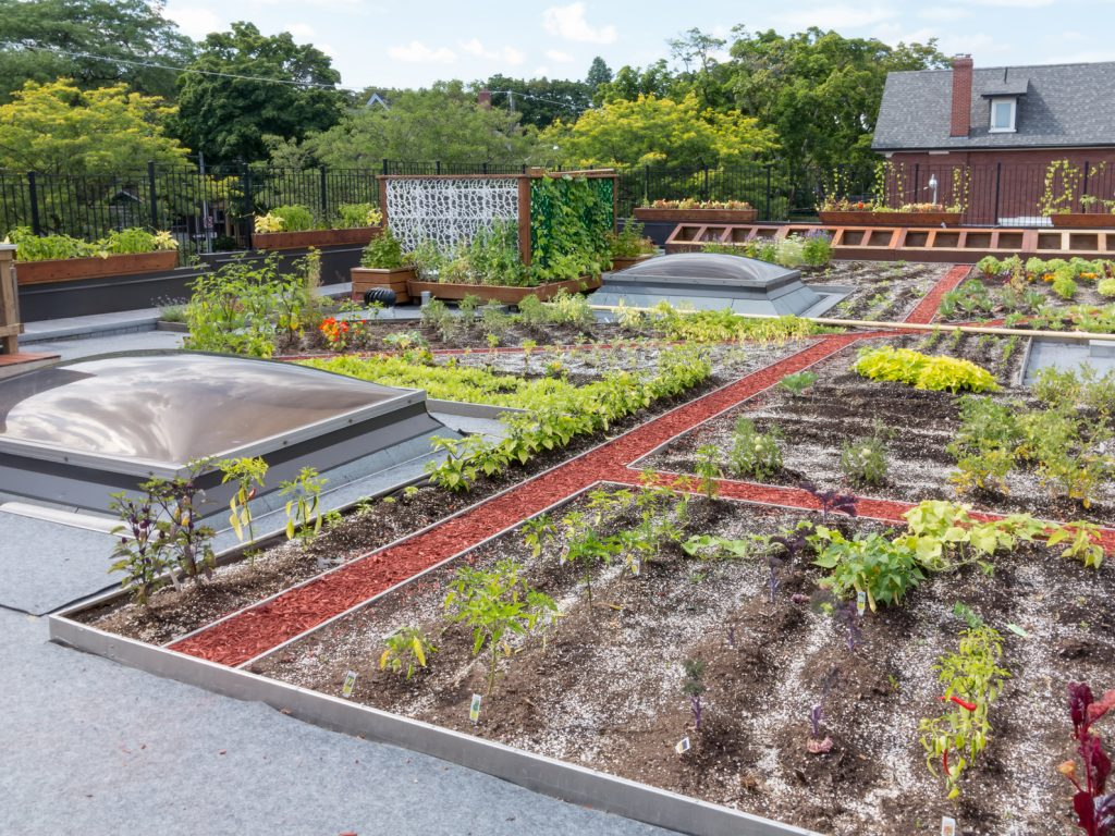 Residential Green Rooftop Engineering