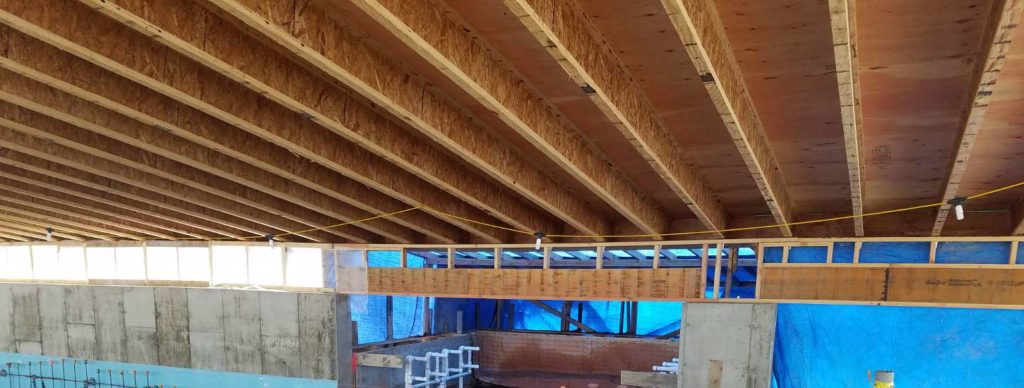 Tango House Structural Wood Framing